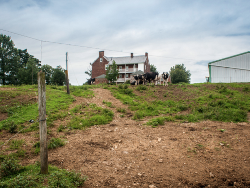 Excavation at the Farm? To Avoid A Costly Mistake, Don't Forget To Call Miss Utility