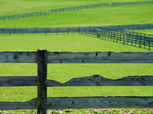 Developing Your Agricultural Land Lease: Updating the Rental Rate