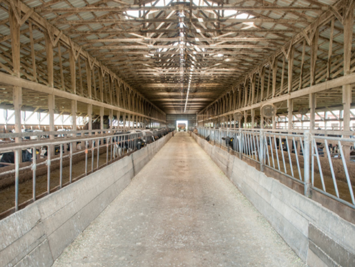 Family Farms Should Consider a Family Business Governance Plan