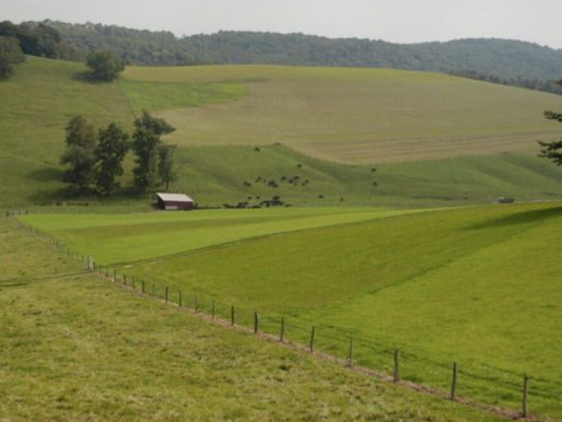 """""""Quick Take"""" Eminent Domain: How Energy Companies Can Take Farmland for Pipelines"""