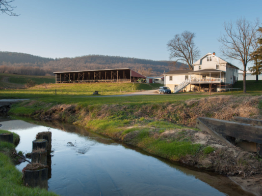 The Home Farm and the Homestead Tax Credit