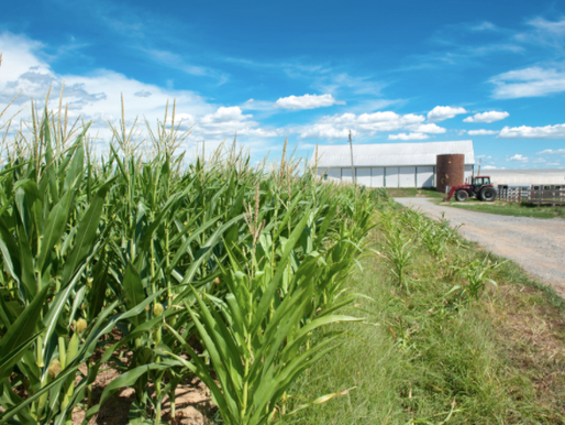How Does Maryland's Right-to-Farm Law Compare With Other States?