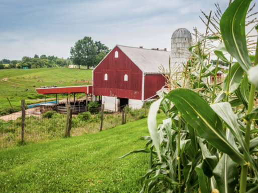 What Maryland Farmers Need To Know About Security Interests