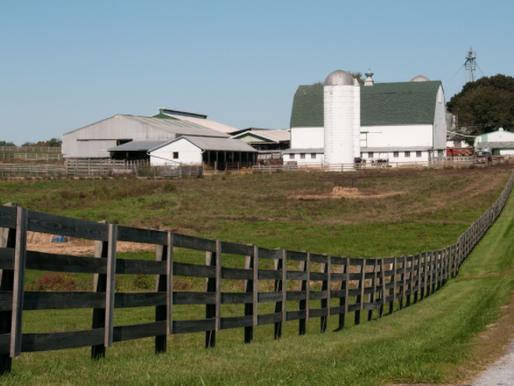 Understanding Easements On Farmland