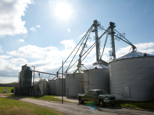 Quick Look at Yield Exclusion Option in 2014 Farm Bill