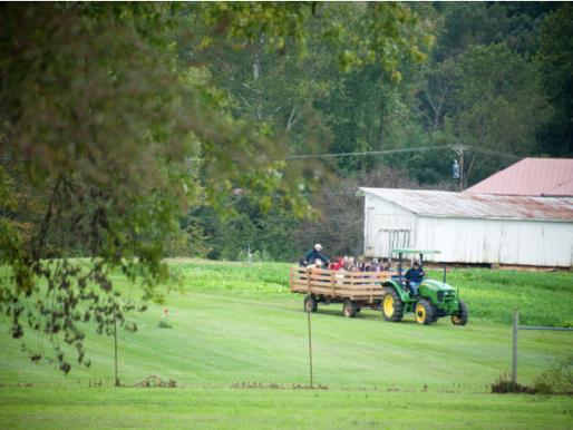 Understanding Potential Liability for Rural Landowners