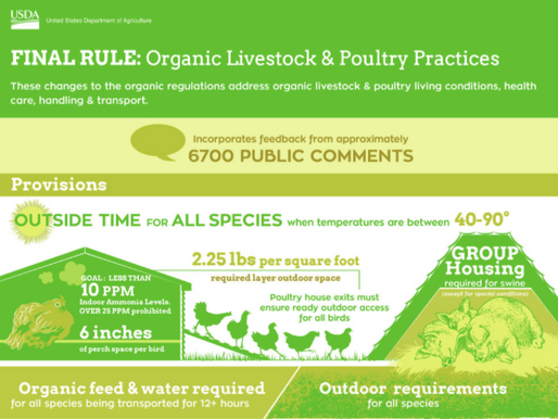 USDA Intends to Withdraw Organic Livestock and Poultry Practices Rule