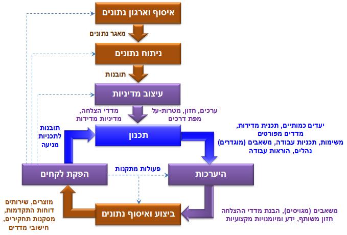 התהליך האבולוציוני