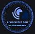 newscheckz.png