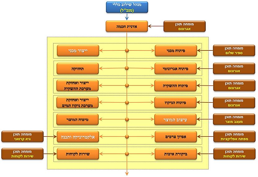 מבנה ארגוני - אדנית חכמה.png