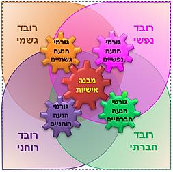 מבנה אישיות 2.png