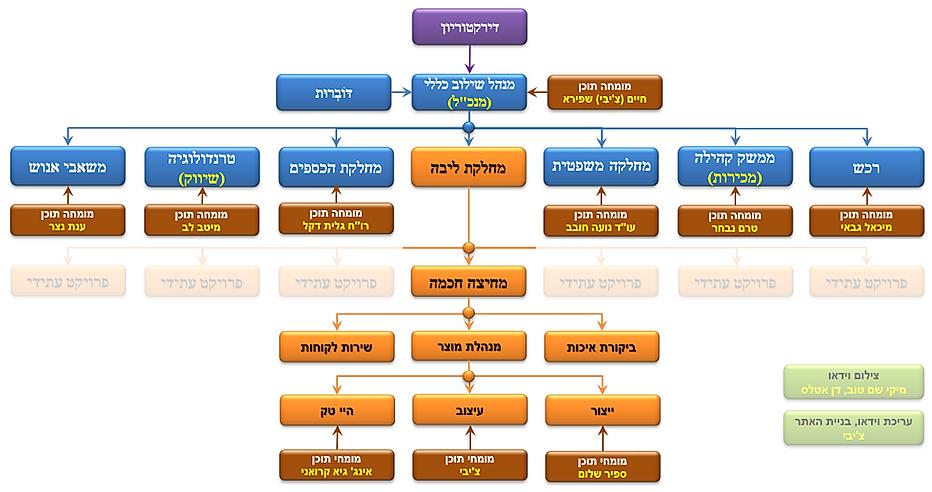 מבנה ארגוני 5.png