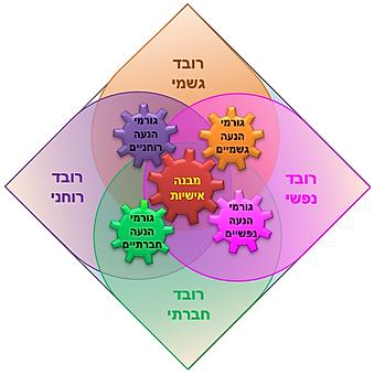 בסיס הפירמידה ומניעי ההתנהגות - 13.png