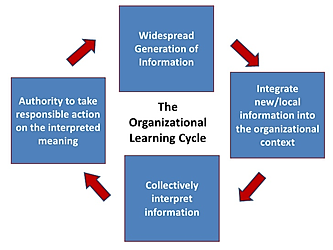 The organizational learning cycle.png