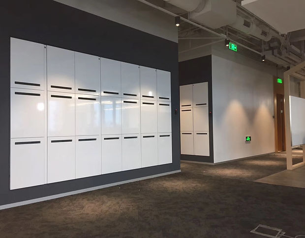 Dailot High Gloss Gym Lockers.JPG