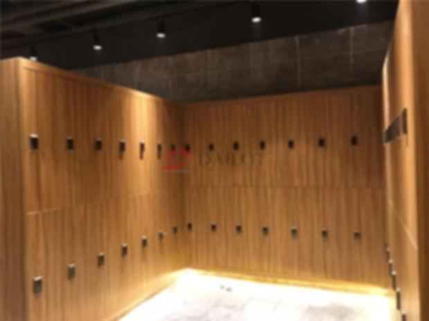 Dailot Gym Lockers07.jpg
