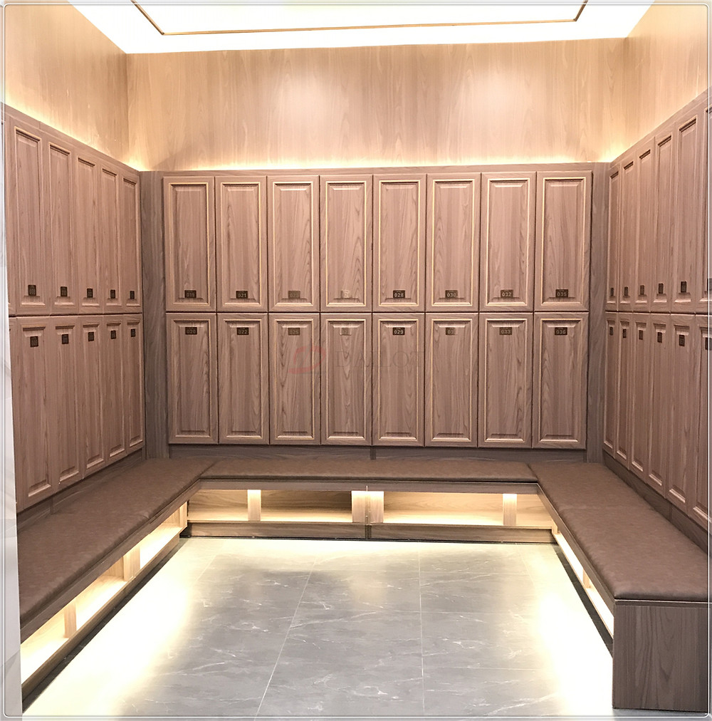 Dailot Wood Lockers with PVC Blister Door