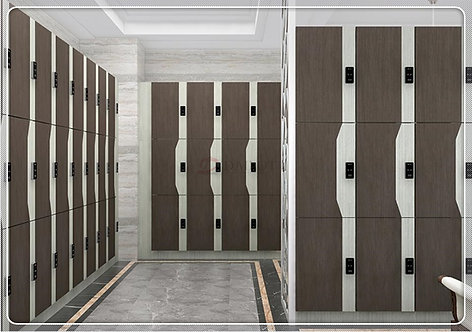 Fashion Design Gym Lockers with Idea Colors