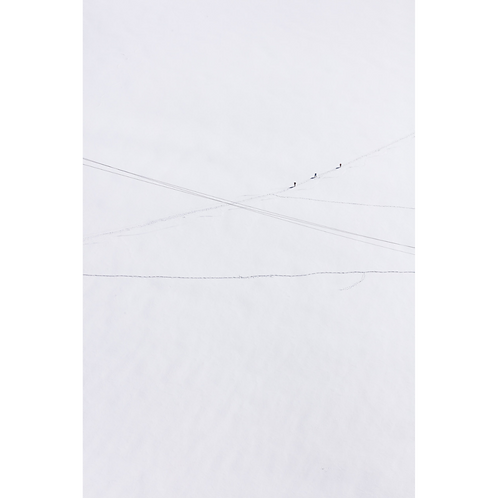 Cross Roads * Nicolas Seurot