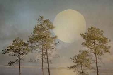 Lune sur Arguin