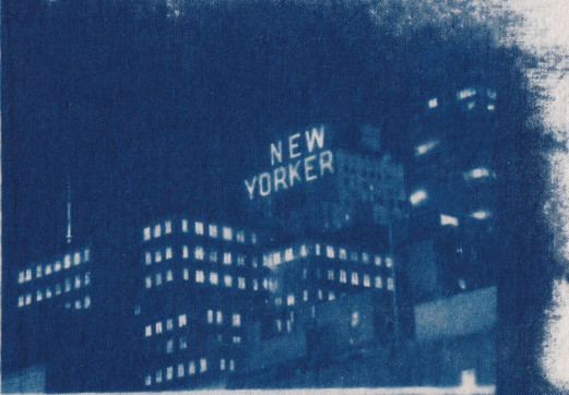 New Yorker Cyanotype