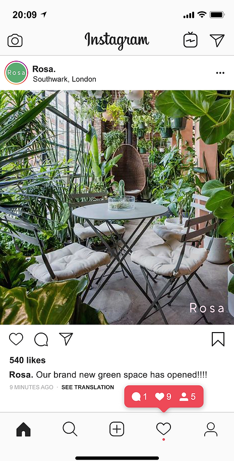 green space insta feed .png