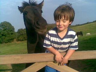 """""""I LOVE MY HORSE!"""""""