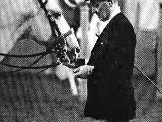 INSPIRING HORSEY BOOKS