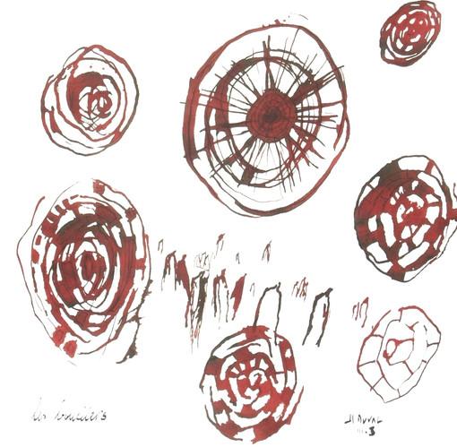 6- Les boucliers - teinture - 30x30 .JPG