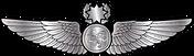 RMN-Naval-Master-Navigator-Wings---Enlis