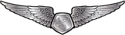 RMN-Naval-Simulator-Wings---Enlisted.png