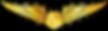 RMN-Naval-Simulator-Wings---Officer.png