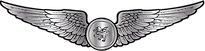 RMN-Naval-Observer-Wings---Enlisted.png