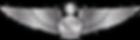 RMN-Naval-Senior-Aerospace-Wings---Enlis