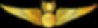 RMN-Naval-Master-Observer-Wings---Office