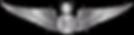 RMN-Naval-Senior-Observer-Wings---Enlist