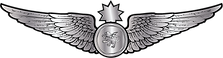 RMN-Naval-Senior-Observer-Wings---Enlist