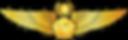 RMN-Naval-Master-Aerospace-Wings---Offic