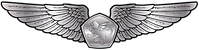 RMN-Naval-Aerospace-Wings---Enlisted.png
