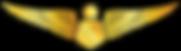 RMN-Naval-Senior-Simulator-Wings---Offic