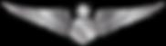 RMN-Naval-Senior-Simulator-Wings---Enlis