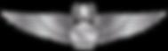 RMN-Naval-Master-Aerospace-Wings---Enlis