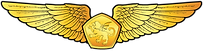 RMN-Naval-Aerospace-Wings---Officer.png