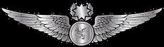 RMN-Naval-Master-Observer-Wings---Enlist