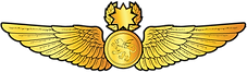 RMN-Naval-Master-Navigator-Wings---Offic