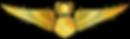 RMN-Naval-Master-Simulator-Wings---Offic