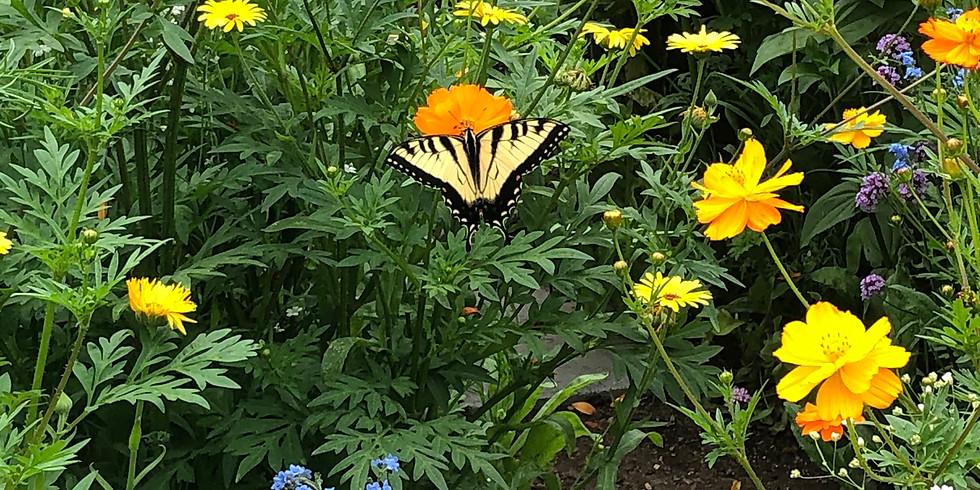 Garden of Hope in Columbus Park (1)