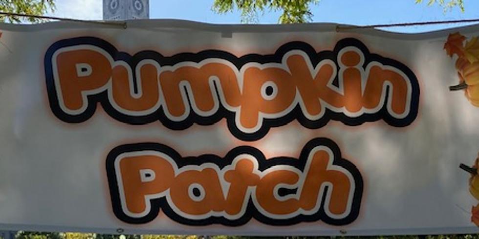 Pop Up Pumpkin Patch (1)