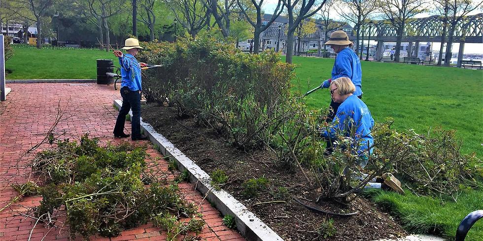 Garden Volunteers - CANCELED!
