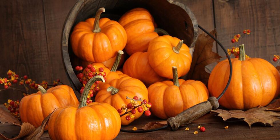Pop Up Pumpkin Patch